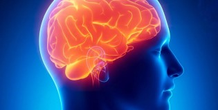 Препараты для памяти и работы мозга на iHerb